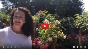 August 2018 French Art School Monet Gardens